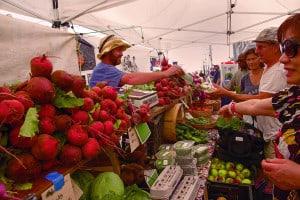 Farmers Market in Provincetown