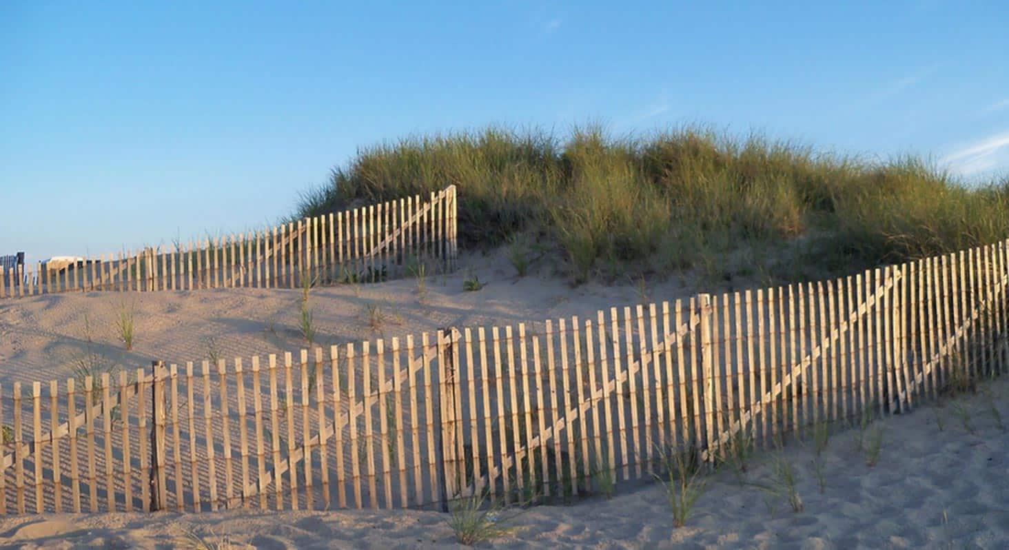 Cape Cod Dunes, tour