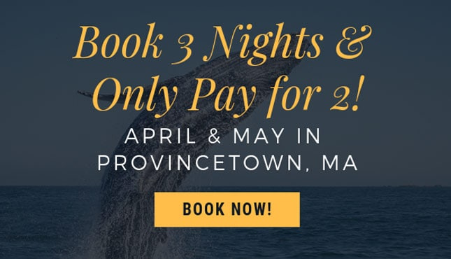 Promotion banner - buy three and only pay for two. For bookings in April and May.